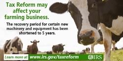 TaxReform-FarmCow.jpg