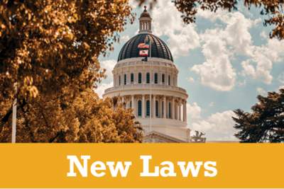 New-Laws-1.png
