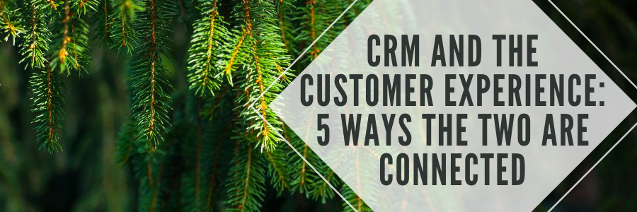 CRM and the Customer Experience 5 Ways the Two are Connected.png