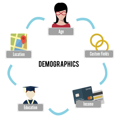 Include Demographics as CRM Activities