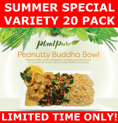Summer Special Variety 20 Pack 8-18