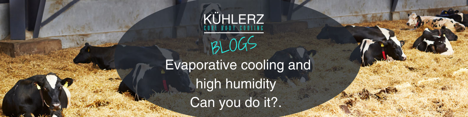 Blog - Humidity .png