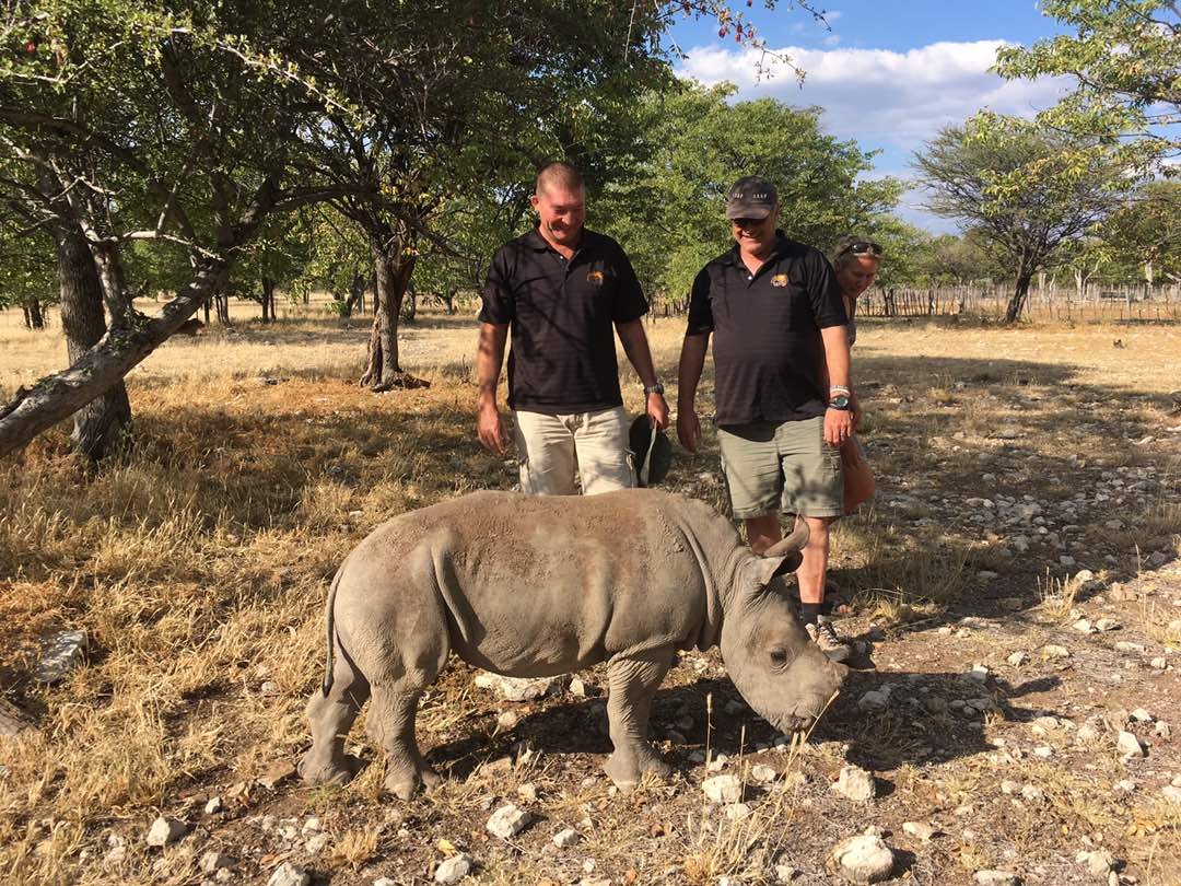 guests rhinos.jpg